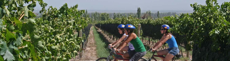 Wine Tasting Tours Temecula